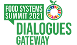 Official Dialogue Feedback to the United Nations Food Systems Summit in Latvia is published